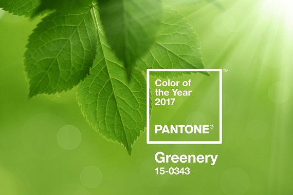 Personal Stylist Houston Pantone Color of the Year Greenery