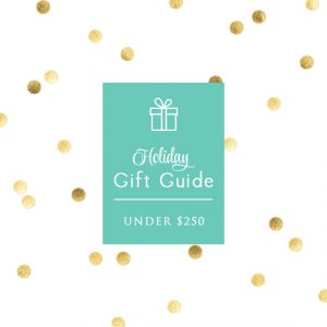 Holiday Gift Guide Under 250 by Signature Style Intro Pic